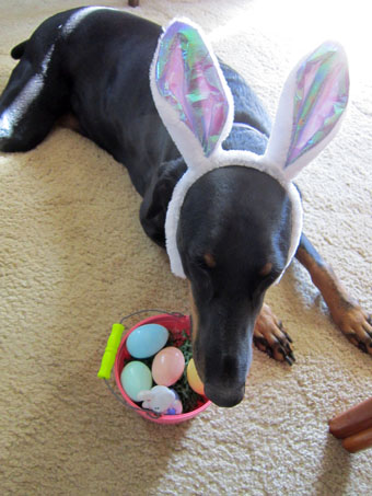 BELLA_EASTER