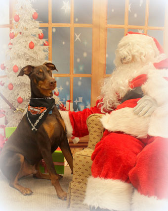 KATO PUP's first visit with Santa