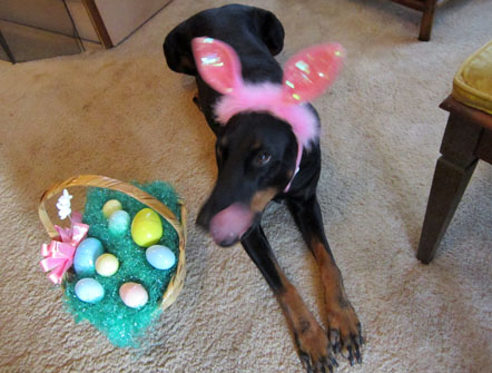 EASTER BELLA