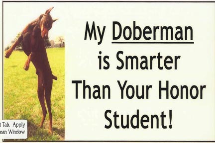 "Decal - clear background , Size 8 3/4"" wide x 4"" tall My doberman is smarter than your honor student"