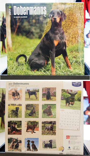 Wall Calendar 2017 - Natural Ears