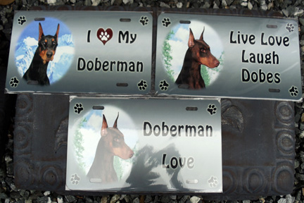 "License Plate 12"" x 6"" (special order in any color Dobe and any of three text samples)"