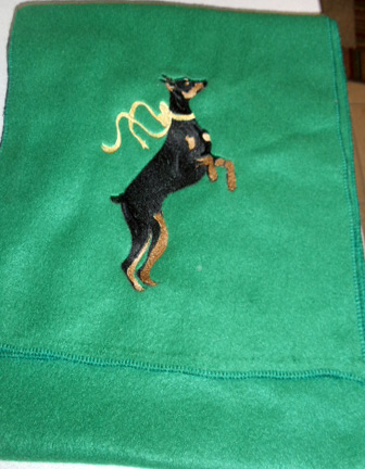 "EMBROIDERED FLEECE SCARF 57 1/2"" x 13"""